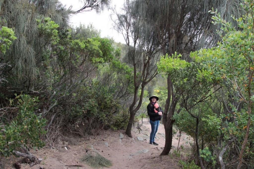 Meterhohe Farne, Palmen und unglaublich dicke Eukalyptusbäume - und dazu dieser köstliche Tropenduft...