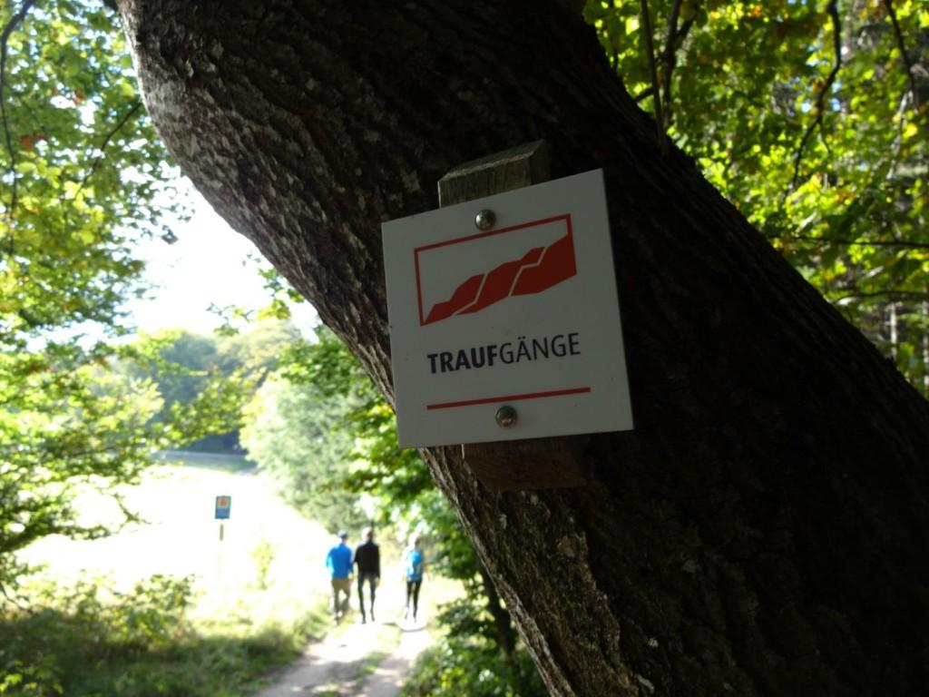 Premieumwanderweg Traufgang Etappe Zollernburg Panorama